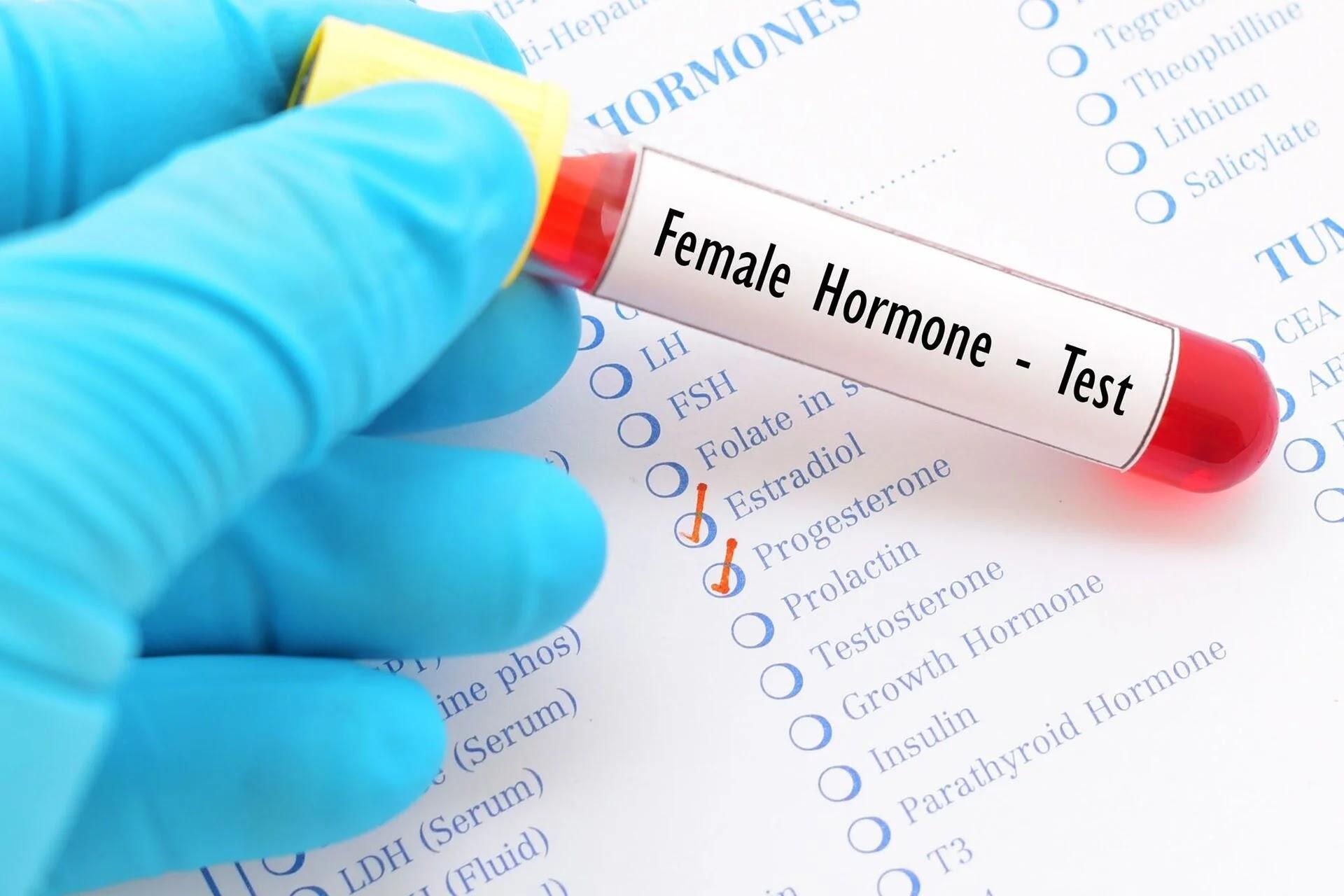 Makanan-makanan Yang Membantu Menstabilkan Hormon Estrogen dan Progesteron