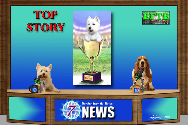 BFTB NETWoof News reports on Westminster Dog Show