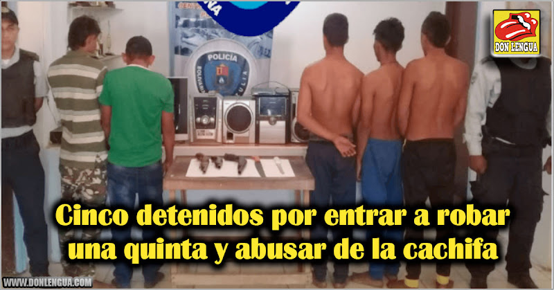Cinco detenidos por entrar a robar una quinta y abusar de la cachifa