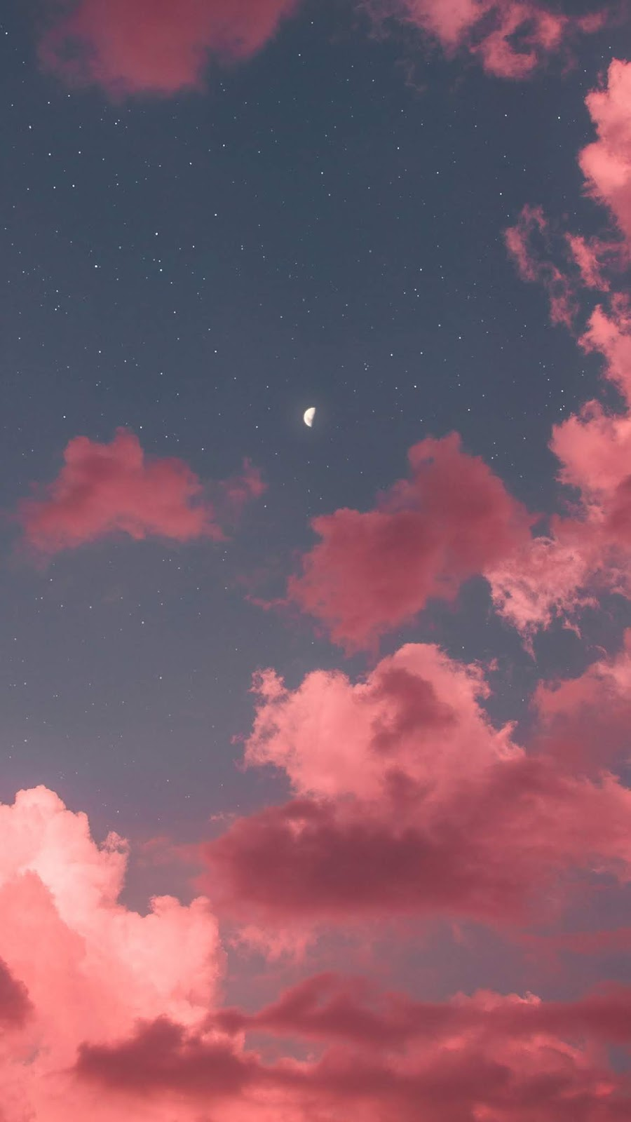Half moon in the pink sky