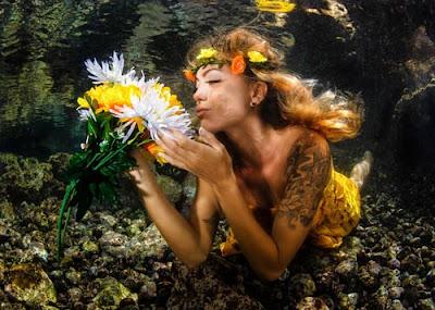 фотографска изложба тенерифе подводен рай