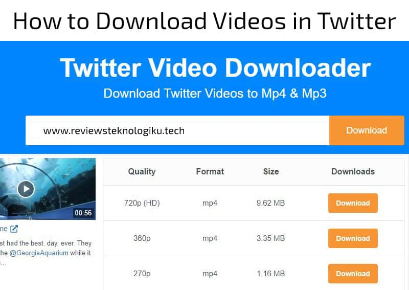 download video twitter