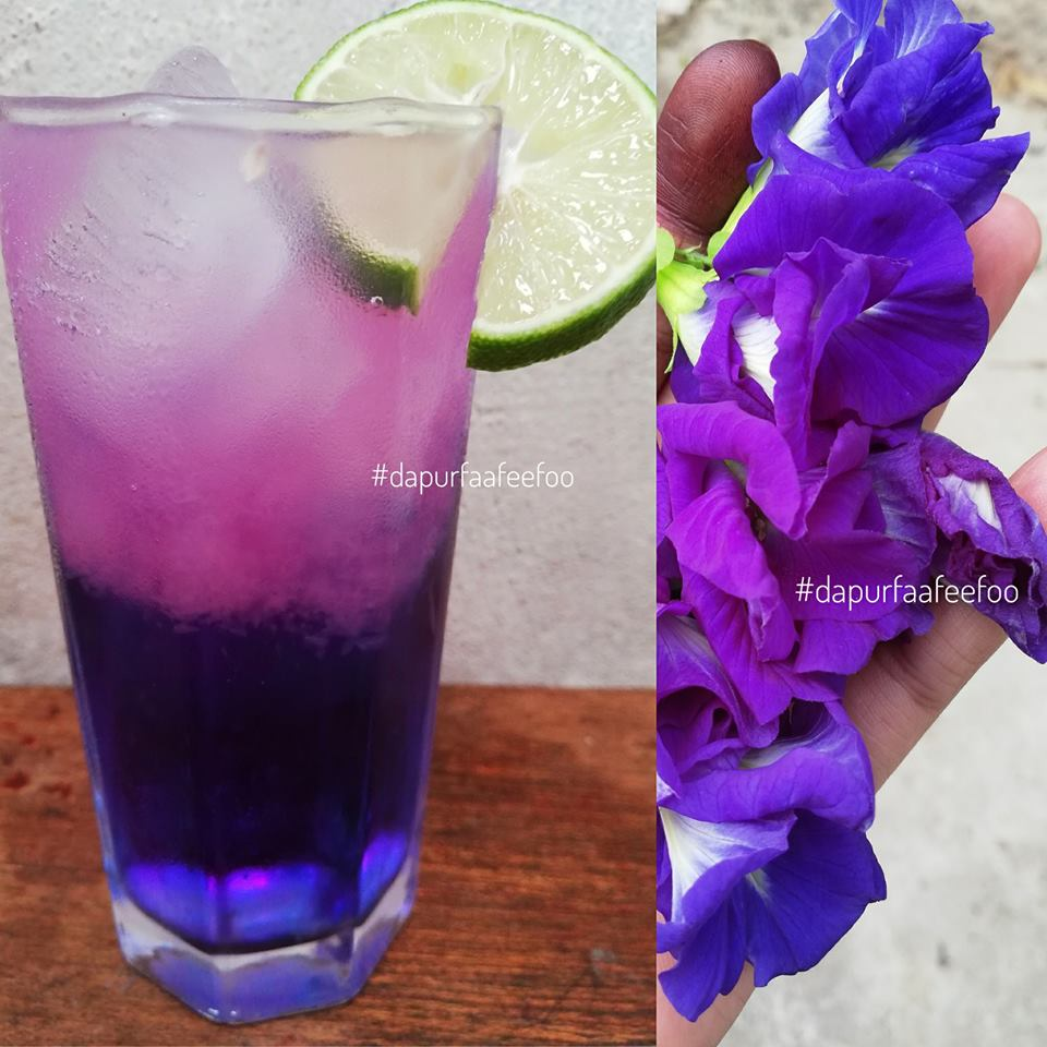 resepi blue butterfly drink