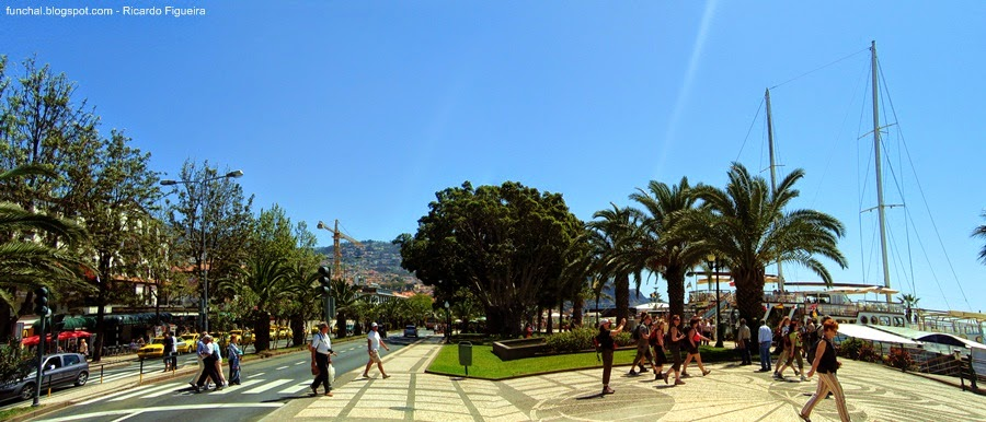 AVENIDA DO MAR - FUNCHAL