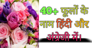 फूलों के नाम (flowers name in Hindi and English)