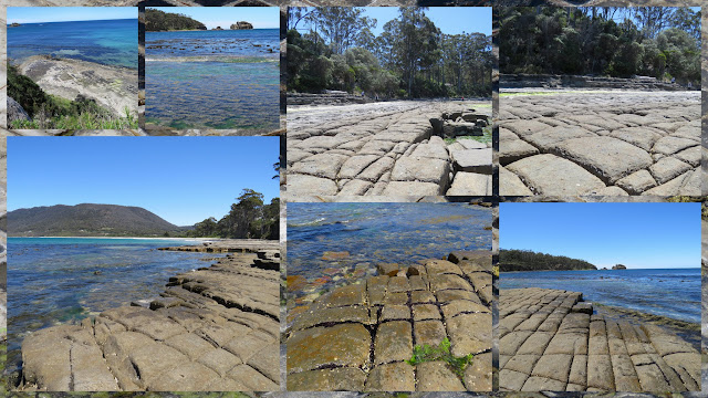 Tesselated Pavement on the Hobart to Port Arthur Drive in Tasmania