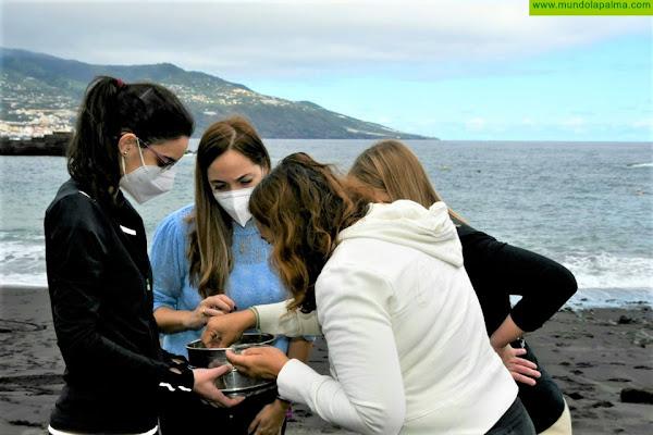 Medio Ambiente y AChem abordan en centros educativos de La Palma la afección ambiental de los microplásticos en el mar