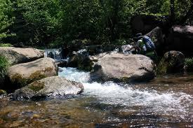 【佛教小故事:溪水的啟示】