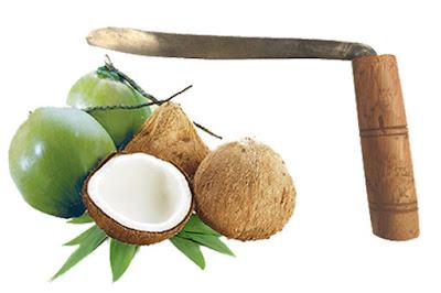 Dụng cụ tách cùi dừa