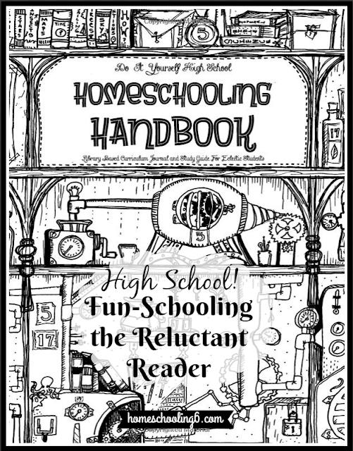 Fun Schooling the High Schooler