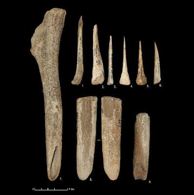 Archaeologists study tools made by Homo sapiens near Vladimir