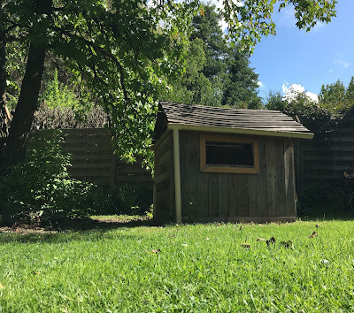 cabane d'enfant et likidembar d'écureuil