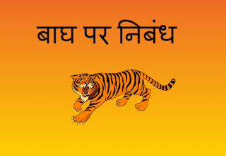 Essay on Tiger in Hindi