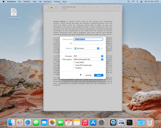 PDF Anteprima