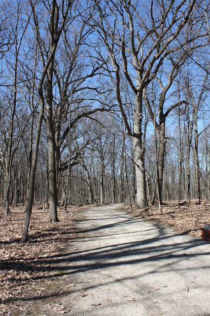 Peaceful trail in Coral Woods in Marengo, Illinois