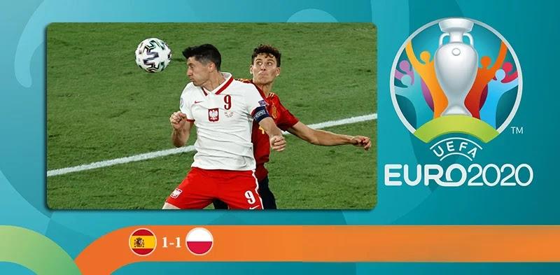 Spain vs Poland Highlights