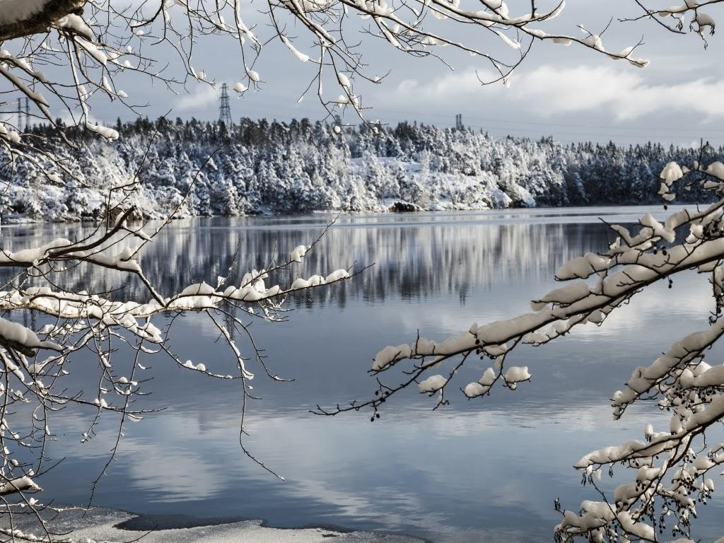 Imagenes Gratis De Invierno