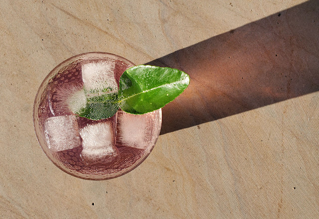 gin with lime leaf by marie viljoen