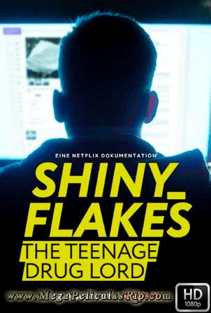 Shiny_Flakes: El Cibernarco Adolescente [1080p] [Latino-Aleman-Ingles] [MEGA]