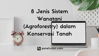 8 Jenis Sistem Wanatani (Agroforestry) dalam Konservasi Tanah