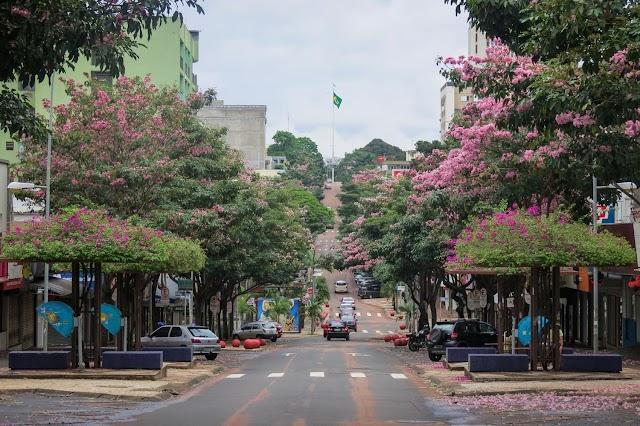 Câmara de Foz é parceira no processo de transformação da Avenida Brasil
