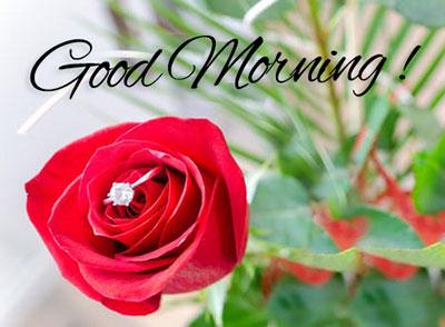 good morning image pics