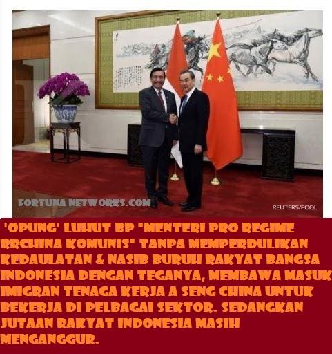 Apa Alasan LBP Menggelar Karpet Merah Untuk Buruh Imigran China?