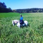 instagram travel thursday, portugal, riitta reissaa, matkablogi, lusitano