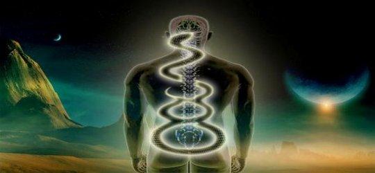 Subconscious Mind: Kundalini Yoga : Awakening The Primordial