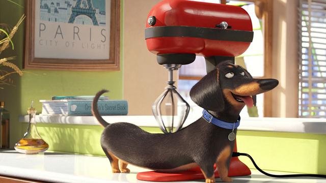 Dica de filme - Pets: A Vida Secreta dos Bichos