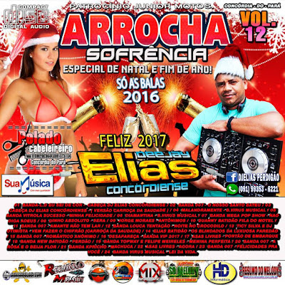Cd de Arrocha Especial de Natal e Fim de Ano Vol. 12 2016 Dj Elias Concórdiense