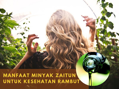 Manfaat Minyak Zaitun Untuk Kesehatan Rambut