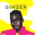 "Music: Yuppie Vibez - ""Ginger"""