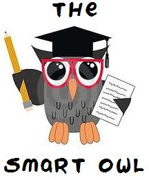 THE SMART OWL