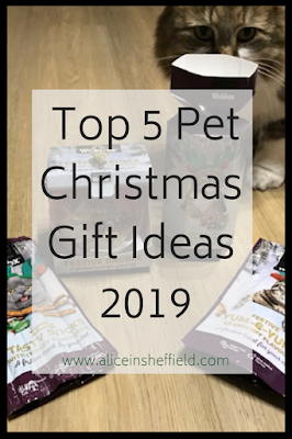 Pet Christmas Gift Guide