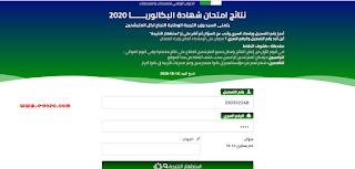 نتائج بكالوريا 2020 عن طريق الموقع resultat bac