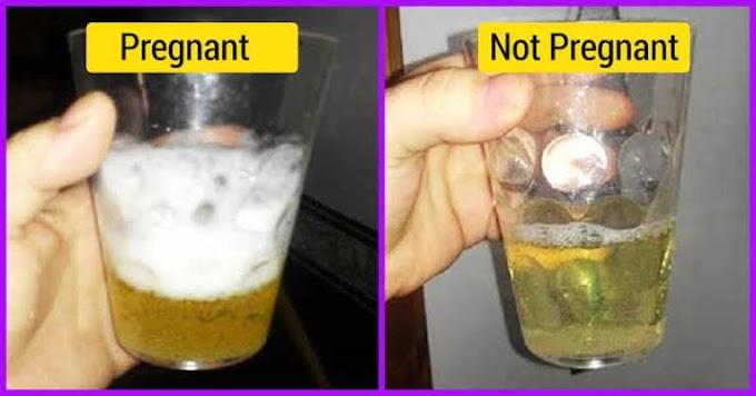 प्रेगनेंसी टेस्ट करने के घरेलू उपाय pregnancy test karne ke gharelu upay