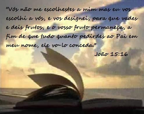 Resultado de imagem para João 15:16