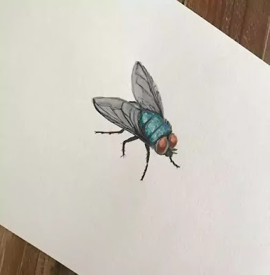 The poet in a thoughtless moment kills a fly and feels sorry for his act. The fly's life is very short and the poet feels it is sinful to kill it.