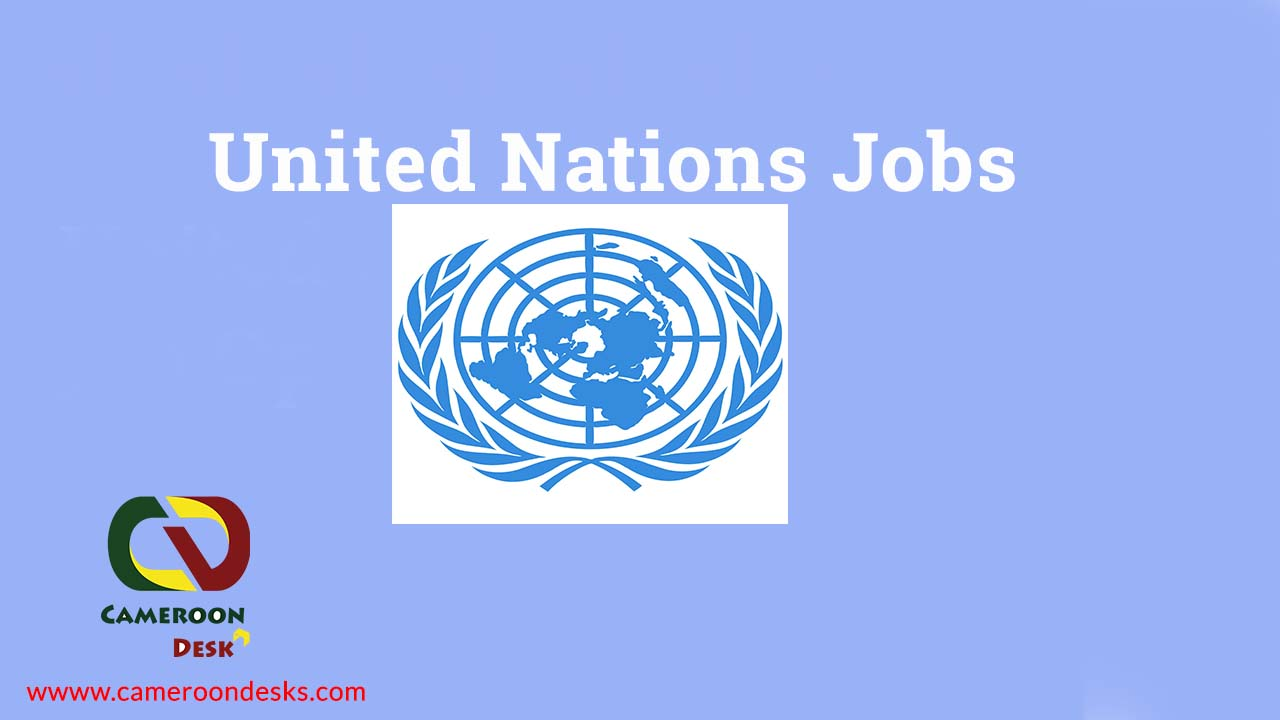 United Nations Jobs 2022-2023