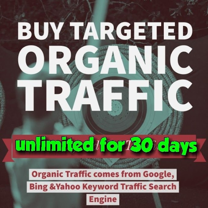 3500 Monthly Web Visitor Authentic Traffic Adsense Friendly