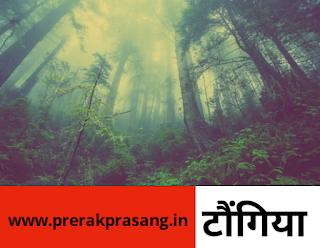 प्रेरक प्रसंग,prerak prasang,टाैंगिया,प्रेरक प्रसंग,एक प्रेरक प्रसंग,आज का प्रेरक प्रसंग,प्रेरक कहानी,प्रेरणादायक कहानी,मॉरल स्टोरी,prerak prasang,prerak prasang in hindi,prerak katha,prerak prasang hindi,hindi prerak prasang,prerak prasang hindi me,prerak kahaniya,prerak kathaye,