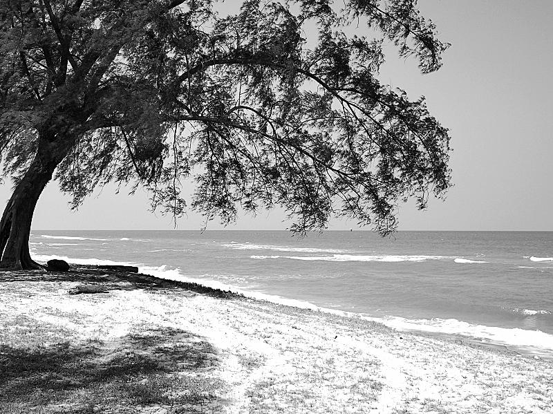Quiet On The Beach 03