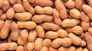 Dangers of eating peanuts