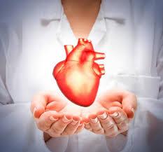 """Estudios revelan que hacer ejercicios vigorosos  el corazón se """"esponja"""""""