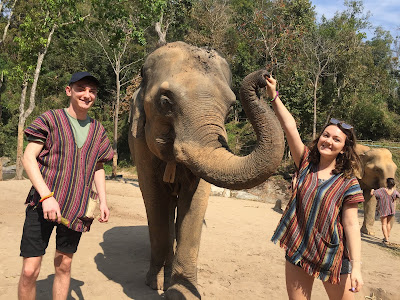 Choosing the right elephant sanctuary in Thailand