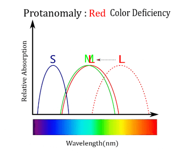 Online Colour Blindness Test free, Red Colour Deficiency, Colour Blindness
