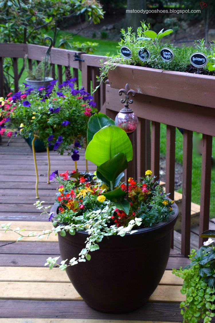 Create an attractive outdoor living space | Ms. Toody Goo Shoes