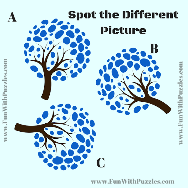 Odd One Out Picture Puzzle to twist your brain