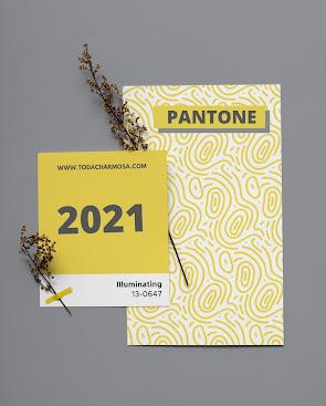 PANTONE CORES DO ANO 2021